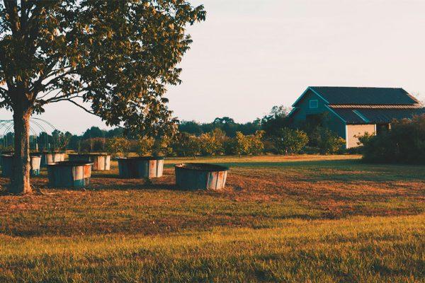 barn construction fairhope