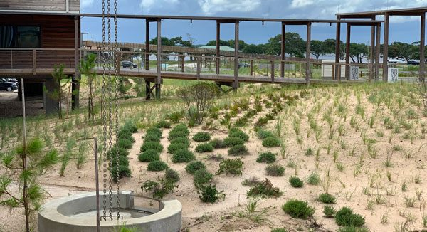 gulf state park lodge sustainable sites